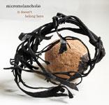 Micromelancolié
