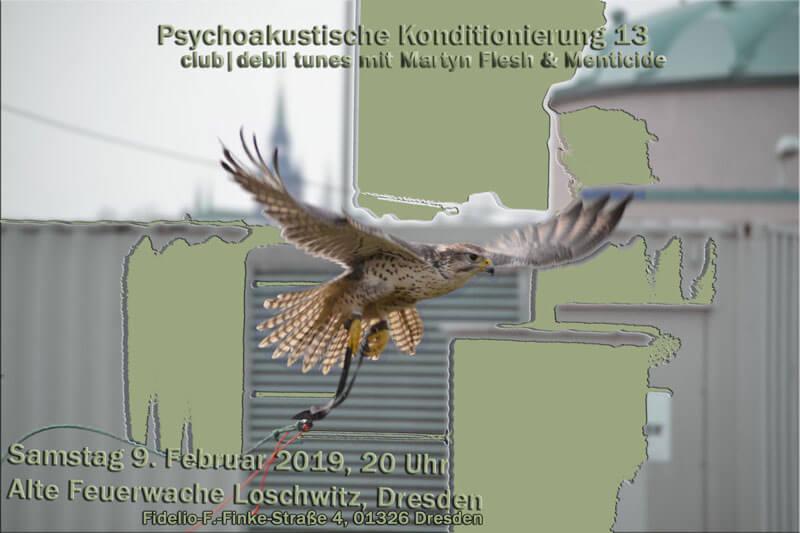Psychoakustische Konditionierung XIII